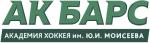 Академия хоккея АкБарс